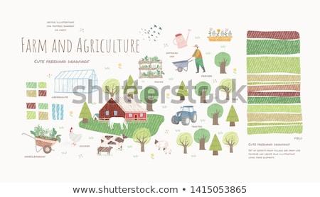 Farming People at Lands Set Vector Illustration Stock photo © robuart