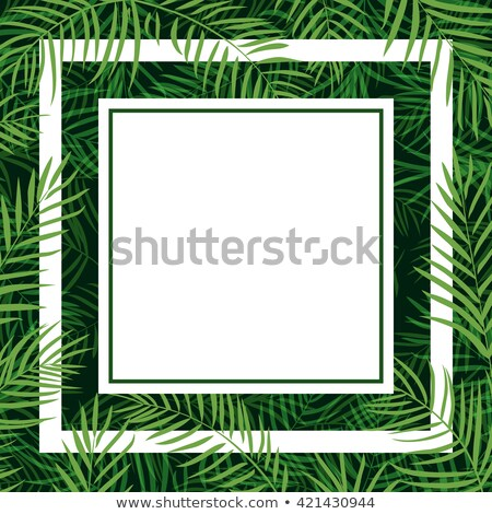 tropische · palmblad · grens · vector · zomer · palmboom - stockfoto © sonia_ai