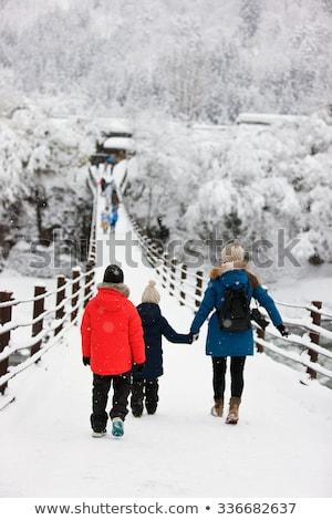 Köprü nehir kış Japonya doğa manzara Stok fotoğraf © dolgachov