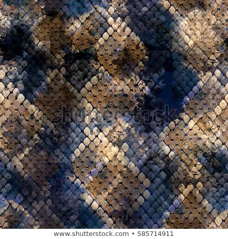 бесшовный животного шаблон иллюстрация искусства лев Сток-фото © colematt