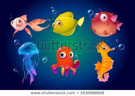Cartoon marines animaux illustration Photo stock © izakowski
