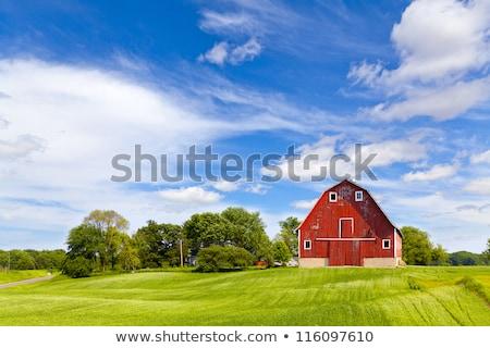 Rojo granero granja escena ilustración hierba Foto stock © bluering