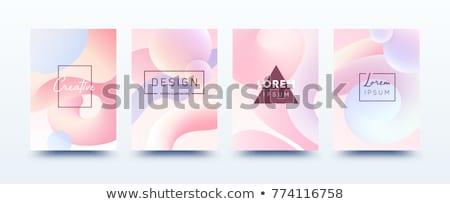 Puha pasztell szín görbe bannerek szett Stock fotó © SArts