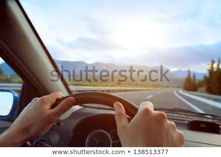 Handen bestuurder wiel auto beweging wazig Stockfoto © lightpoet