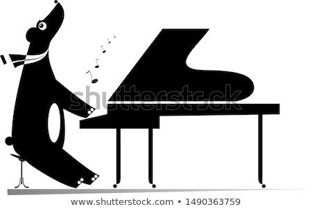 Grappig beer pianist geïsoleerd illustratie cartoon Stockfoto © tiKkraf69