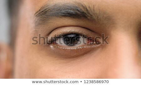 close up of south asian male eye with brown iris Stock photo © dolgachov