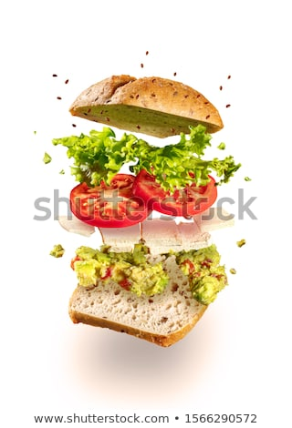 Vegetariano sanduíche tofu branco voador queijo Foto stock © georgemuresan