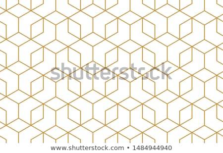 Vector naadloos geometrisch patroon creatieve oneindig Stockfoto © ExpressVectors