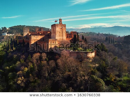 Aerial drone point of view Granada castle and surrounding lands  Stock photo © amok
