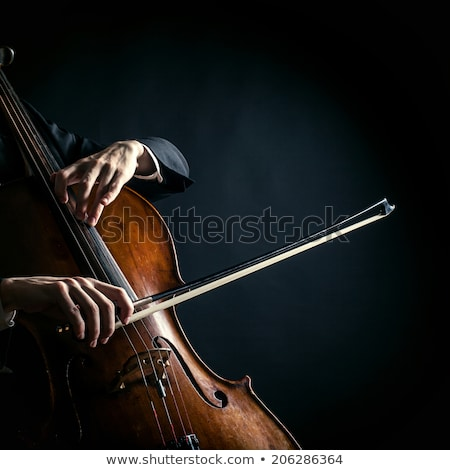 musician man playing cello instrument Stock photo © yupiramos