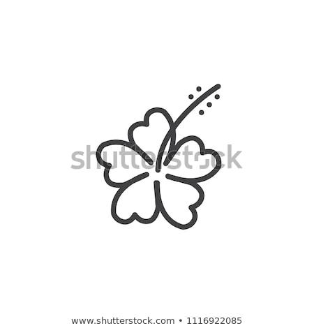 Hibisco flor ícone vetor ilustração Foto stock © pikepicture