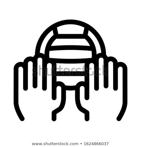 バレーボール ボール アイコン ベクトル 実例 ストックフォト © pikepicture