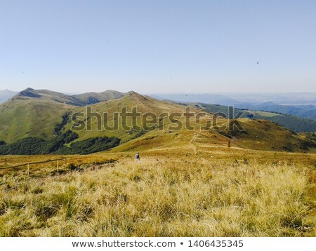 Karpaty Montains Stock photo © shyshka