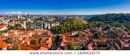 ヴィルニアス 大聖堂 旧市街 表示 リトアニア ツリー ストックフォト © joyr