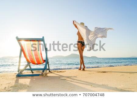 Fiatal nő bikini sziluett áll tengerpart háttér Stock fotó © nurrka