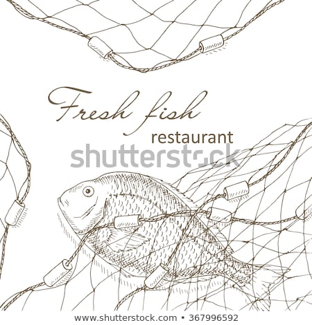 fish caught in fishnet Stock photo © phbcz
