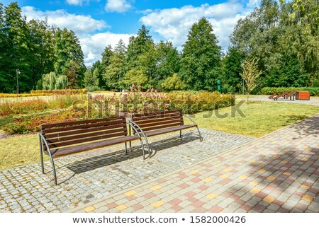 Paved park track on the lawn Stock photo © dsmsoft