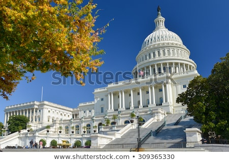 Autumn at the U.S. Capital Building Washington DC Red Leaves Stock photo © Qingwa