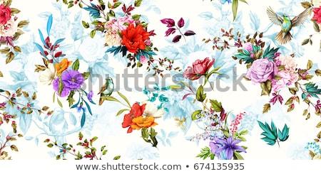 Foto stock: Belo · abstrato · flores · aves · ilustração · projeto