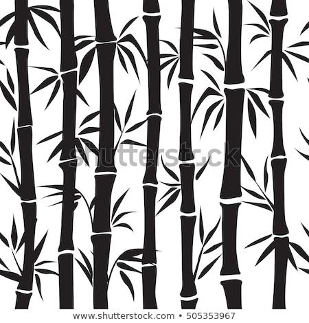 bezszwowy · zielone · bambusa · lasu · biały · tekstury - zdjęcia stock © hermione