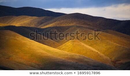 Evening foothills Stock photo © Saracin
