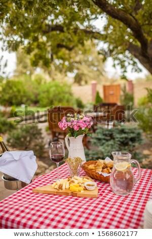walnut on picnic tablecloth stock photo © jirkaejc