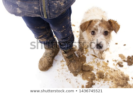 muddy couple portrait Stock photo © prill