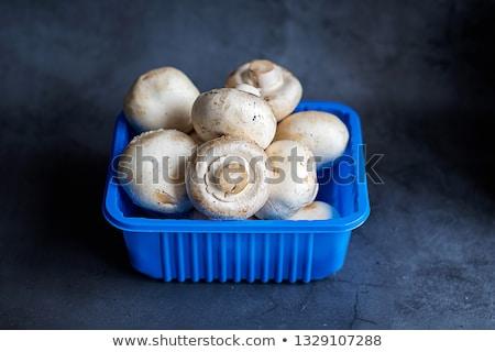 champignon · gombák · kék · három · fehér · természet - stock fotó © compuinfoto