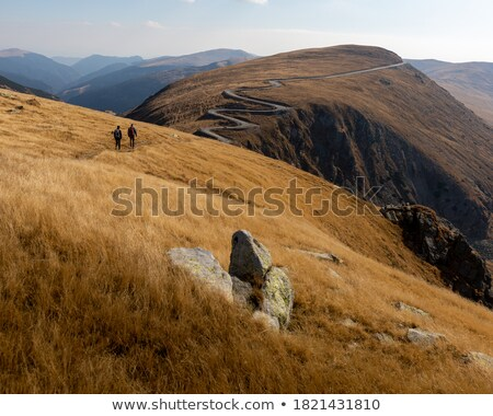 Couple hiking through the wilderness Stock photo © photography33