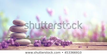 Fürdő kövek virág csendélet kép fekete Stock fotó © Ronen