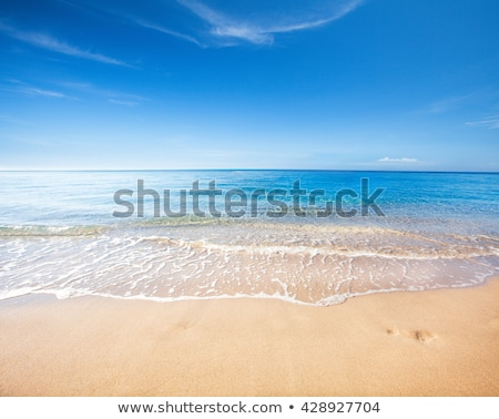 Beach and Sky Stock photo © iTobi