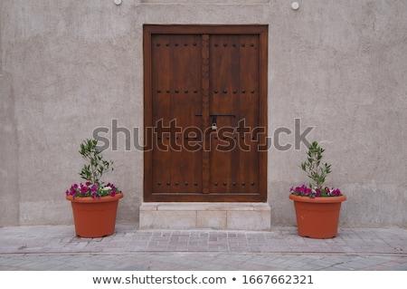 Edad puerta entrada cerrado Foto stock © dinozzaver