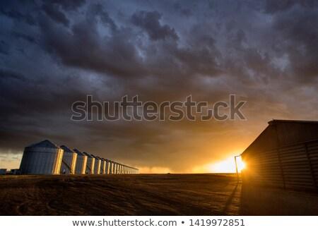 Onweersbui prairie illustratie afbeelding openbare domein Stockfoto © Stocksnapper