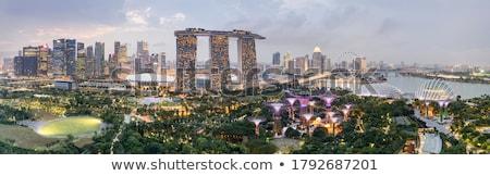 singapore night skyline stock photo © joyr