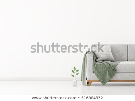 White sofa and cushions Stock photo © dutourdumonde