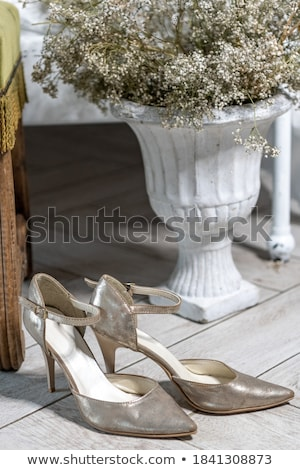Pair of elegant light shoes on wooden white floor Stock photo © jaycriss