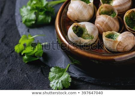 Fransız gastronomi arka plan akşam yemeği yemek salyangoz Stok fotoğraf © M-studio