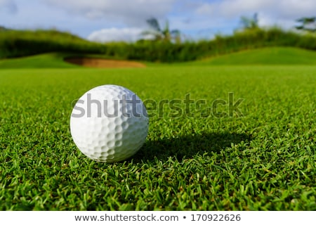 Golf ball and iron club on grass Stock photo © RTimages