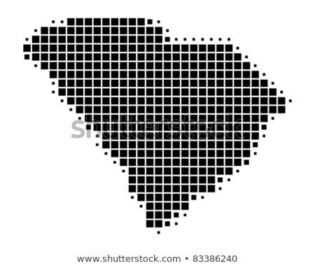 Map of USA South Carolina State with Dot Pattern Stock photo © Istanbul2009