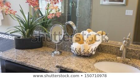 ванную Гранит Top современных шкаф внутри Сток-фото © JFJacobsz