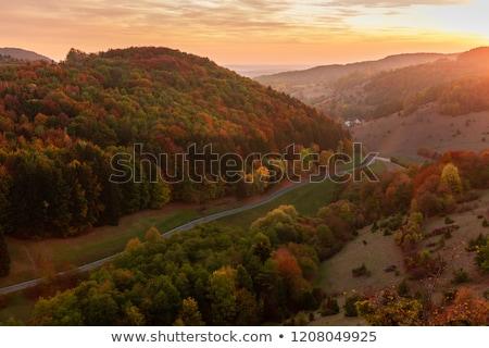 Landschap Duitsland afbeelding romantische bomen rivier Stockfoto © w20er
