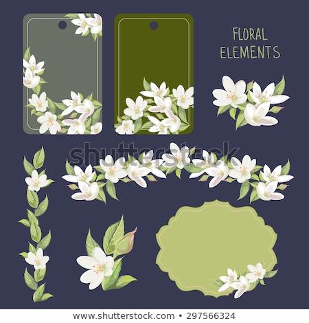 Jázmin jegyzet virág papír textúra fa Stock fotó © tycoon