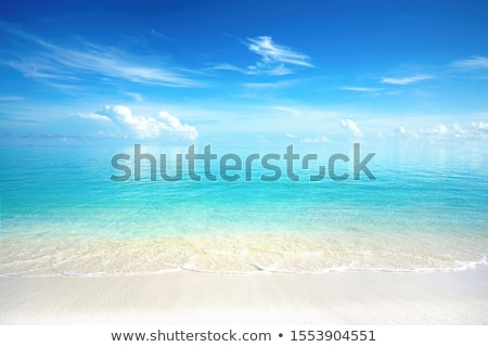 tropical perfect turquoise beach blue water Stock photo © lunamarina