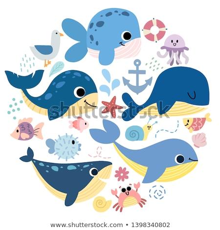 Przyrody Delfin delfiny dłoni mewa wody Zdjęcia stock © mayboro1964