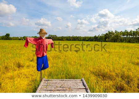 scarecrows in love Stock photo © adrenalina