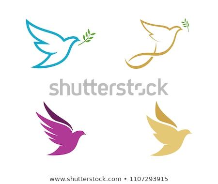 colombe · lettre · ciel · amour · heureux · résumé - photo stock © ggs