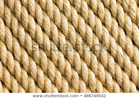 Diagonal strands of a new thick sisal rope Stock photo © ozgur