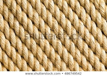 Diagonale nuovo corda full frame texture Foto d'archivio © ozgur