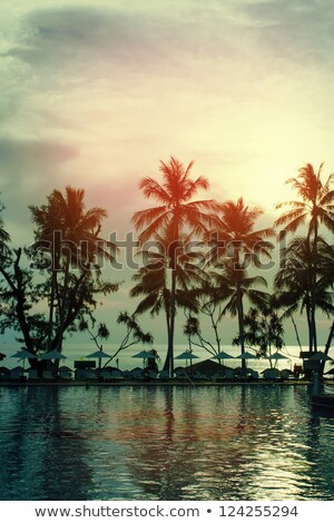 закат · пляж · вертикальный · стиль · небе · воды - Сток-фото © bank215