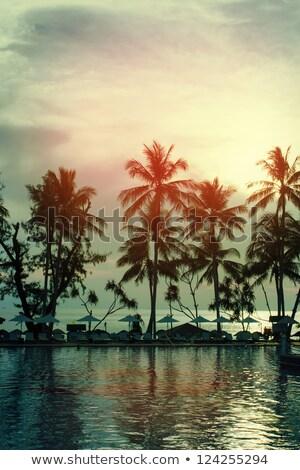 Gün batımı plaj dikey stil gökyüzü su Stok fotoğraf © bank215